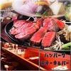 【オススメ5店】西武池袋線(小手指~飯能)(埼玉)にあるステーキが人気のお店