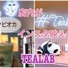 店内がインスタ映えのTEALAB ティーラボでパンダになれる!?天王寺・阿倍野のタピオカ