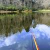 富沢の池47(水門落ち葉で詰まってました)