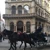 【女一人旅なう】全く話せないドイツ語に悪戦苦闘中のウィーン・オーストリア編