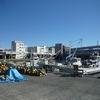 小田原 早川漁港 港の台所なみで昼間からわいわいお魚飲み会&早川散歩!