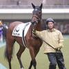 指名馬情報:牝馬第10位【画像有り】