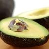 アボカドの栄養成分とメリット・デメリット!食べ頃を見極めるポイント!