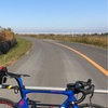 本日のライド 江戸川〜利根川 利根川橋まで往復153km