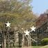 GWは宮城・仙台近郊の公園でアスレチックやBBQピクニック!おすすめ3選!