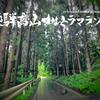 挑むべくは飛騨の龍、臥龍桜の咲く先に・・・【レース前編】【飛騨高山ウルトラマラソン】