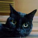 哲学のプロムナード(ΦωΦ)黒猫堂