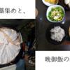 大人2人分328円で作る、肉豆腐。(具材は家にあるもので)