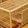 プラスティック製の持ち運べるケージ 猫 ケージ アイリスオーヤマ プラケージ 810