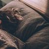 【筋トレ効率化】睡眠不足は筋トレを効果を下げる事を学ぶ