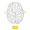 あなたの利き脳はどっち?「右脳派」か「左脳派」か診断で調べてみた