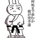 カラテウサギの全て空手で解決するブログ(格闘編)