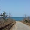 散歩日和なので 日本海下見してたら スティーヴン・ホーキング博士死去のyahooニュース 「フィールド・オブ・ドリームス」
