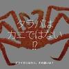 565食目「タラバはカニではない!?」ズワイガニはカニ。その違いは?