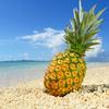 青さんの果実酒 パイナップルで酔っぱらう。