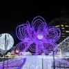 最初は1,048個の電球だった。札幌『さっぽろホワイトイルミネーション』へ行ってきた。