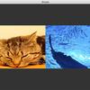 【OpenGLでゲームを作る】複数のテクスチャを表示する
