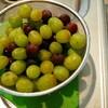 【節約】ぶどうの天然フルーツアイス