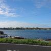 手賀沼遊歩道はウォーキング&ジョギングにおすすめ