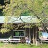 群馬県太田市の森のようちえんじらんぼうの拠点と、前橋の共同保育所スタートのお知らせ