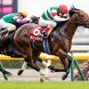 【アイビスSD展望】直線1000mの名物重賞、あの馬に期待したい