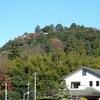 ムシとヤマのススメin飯能④天覧山のオオムラサキ