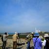 干潟・湿地を守る日2012 in愛媛 重信川河口探鳥会