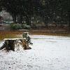 雪の公園とJupiter-9