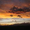 幸運の雲 龍の画像で年賀状