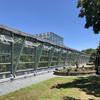 小石川植物園25