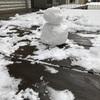 育休19日目 雪