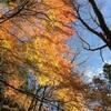 12/11(日)『クリスタルボウル瞑想&呼吸法』