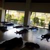 京都 加茂『men's yoga』大好評につき今年も続々決まっています‼︎