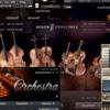【2021年】オーケストラに使える!おすすめストリングス音源とその特徴【DTM】