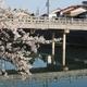 茶屋街の桜【主計町】2020年桜未UP編