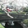 """[人物][地域] 東京歴史人脈帳(2)−10  浅草界隈 """"武家"""""""