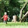 【決定版】ピクニックの必需品と便利な持ち物と子供の遊び道具15選