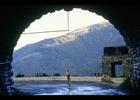 映画『ザ・バニシング-消失-』の私的な感想―二つの金の卵が暗示するもの―(ネタバレあり)