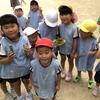久しぶりの幼稚園