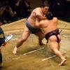相撲会の話題に触れて見ます。ついでに相撲にまつわる井上陽水さんの詞の世界へ。