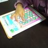 次女のなぞり書きをマスターさせたアプリ