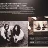 DOUBLE FANTASY -John & Yoko/2Give Peace a Chance