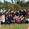 2017年みかんのオーナー制度収穫祭