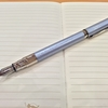 Waterman Perspective 入院