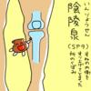脾経(SP)9  陰陵泉(いんりょうせん)