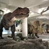 愛媛県総合科学博物館で動くティラノサウルス