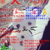 新春大(ダイ)かるた大会のお知らせ