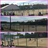 大学の体育会テニス