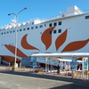【乗船記】大阪南港から鹿児島の志布志までのさんふらわあに乗船。新しい船の便利な設備で長時間の船旅も快適。