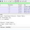 TLS1.3のgo実装 Mintを触ってみる
